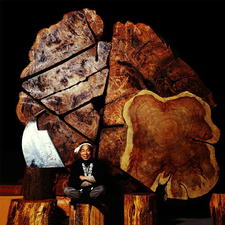 他に類を見ない貴重な銘木の展示